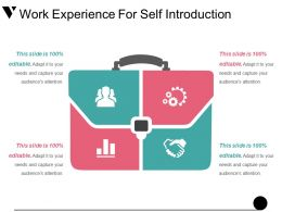 Work Experience For Self Introduction Presentation Layouts