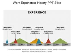 Work Experience History Ppt Slide