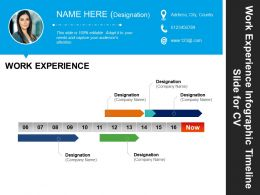 work_experience_infographic_timeline_slide_for_cv_good_ppt_example_Slide01