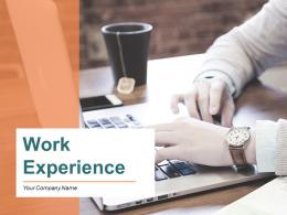 Work Experience PowerPoint Presentation Slides