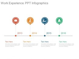 Work Experience Ppt Infographics