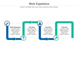 Work Experience Ppt Powerpoint Presentation Pictures Mockup Cpb