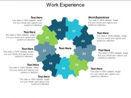 Work Experience Ppt Powerpoint Presentation Show Aids Cpb