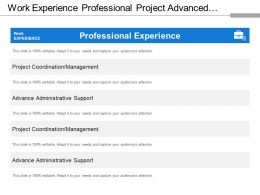 Work Experience Professional Project Advanced Management