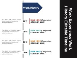 work_experience_work_history_editable_timeline_powerpoint_layout_Slide01