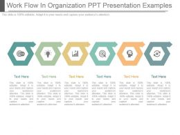 Work Flow In Organization Ppt Presentation Examples