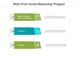 Work From Home Mentorship Program Ppt Powerpoint Presentation Model Example Topics Cpb