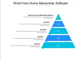 Work From Home Mentorship Software Ppt Powerpoint Presentation Professional Cpb