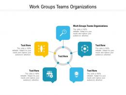 Work Groups Teams Organizations Ppt Powerpoint Presentation Professional Example File Cpb