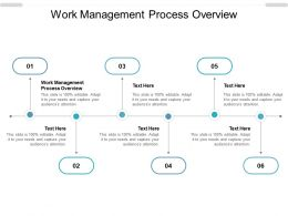 Work Management Process Overview Ppt Powerpoint Presentation Show Cpb