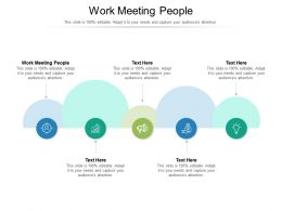 Work Meeting People Ppt Powerpoint Presentation Infographics Model Cpb