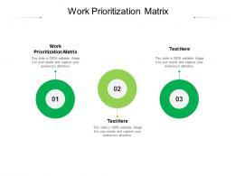 Work Prioritization Matrix Ppt Powerpoint Presentation Portfolio Layout Ideas Cpb