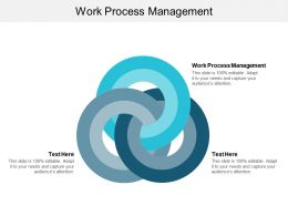 Work Process Management Ppt Powerpoint Presentation Inspiration Tips Cpb