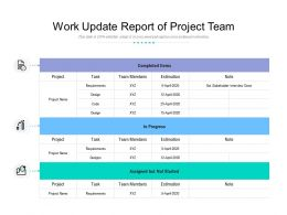 Work Update Report Of Project Team