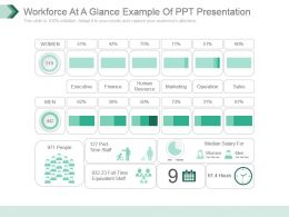 Workforce At A Glance Example Of Ppt Presentation
