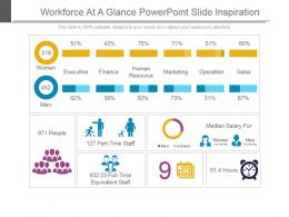 Workforce At A Glance Powerpoint Slide Inspiration