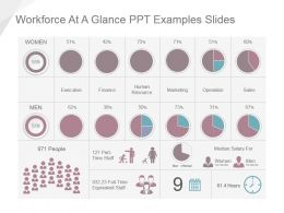 workforce_at_a_glance_ppt_examples_slides_Slide01
