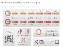 Workforce At A Glance Ppt Samples