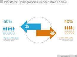 Workforce Demographics Gender Male Female Sample Of Ppt
