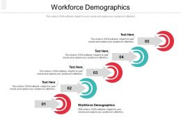 Workforce Demographics Ppt Powerpoint Presentation Pictures Styles Cpb