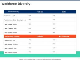 Workforce Diversity Target Ppt Powerpoint Presentation Model Format