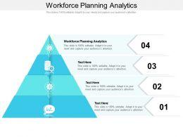 Workforce Planning Analytics Ppt Powerpoint Presentation Ideas Cpb