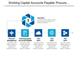 Working Capital Accounts Payable Procure Management Portfolio Management Strategies Cpb