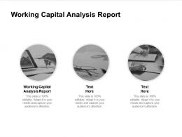 Working Capital Analysis Report Ppt Powerpoint Presentation Layouts Visuals Cpb