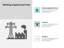 Working Capital Cash Flow Ppt Powerpoint Presentation Professional Information Cpb