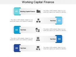 Working Capital Finance Ppt Powerpoint Presentation Pictures Graphics Cpb