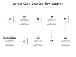 Working Capital Loan Cash Flow Statement Ppt Powerpoint Presentation Ideas Visual Aids Cpb