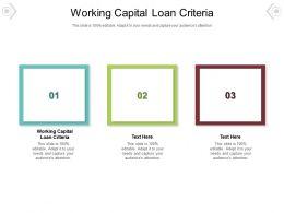Working Capital Loan Criteria Ppt Powerpoint Presentation Visual Aids Ideas Cpb