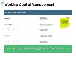 Working Capital Management Inventory Ppt Powerpoint Presentation Icon Example