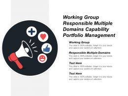 Working Group Responsible Multiple Domains Capability Portfolio Management