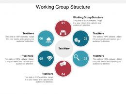 Working Group Structure Ppt Powerpoint Presentation Layouts Clipart Images Cpb