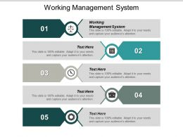 Working Management System Ppt Powerpoint Presentation Slides Infographic Template Cpb