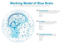 Working Model Of Blue Brain