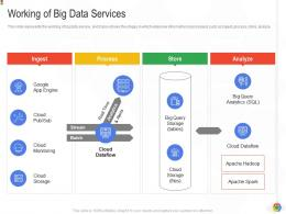 Working Of Big Data Services Google Cloud IT Ppt Introduction Infographics