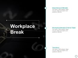 Workplace Break Ppt Powerpoint Presentation Outline Example Topics