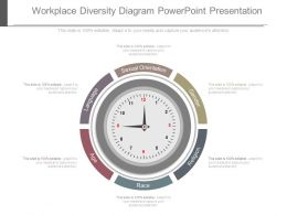 Workplace Diversity Diagram Powerpoint Presentation