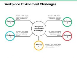 Workplace Environment Challenges Ppt Infographics Good