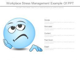 Workplace Stress Management Example Of Ppt