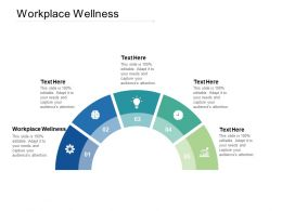 Workplace Wellness Ppt Powerpoint Presentation Pictures Format Cpb