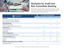 Workplan For Audit And Risk Committee Meeting
