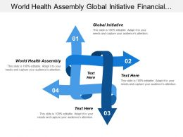 World Health Assembly Global Initiative Financial Performance Audit
