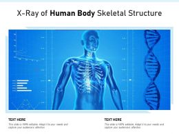 X Ray Of Human Body Skeletal Structure