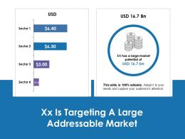Xx Is Targeting A Large Addressable Market Ppt Professional Graphics Design