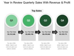 Year In Review Quarterly Sales With Revenue And Profit