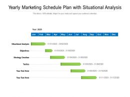 Yearly Marketing Schedule Plan With Situational Analysis