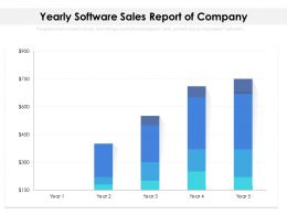 Yearly Software Sales Report Of Company